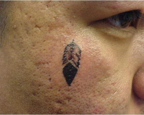 Feather Tattoo on Cheek