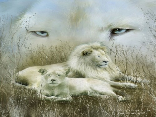Spirit of White Lion