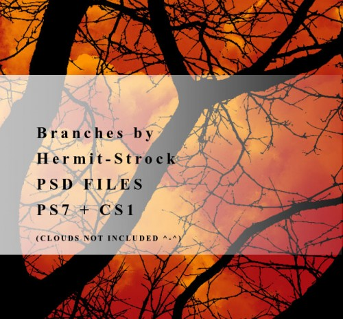 11 Branches Brushes for Photoshop