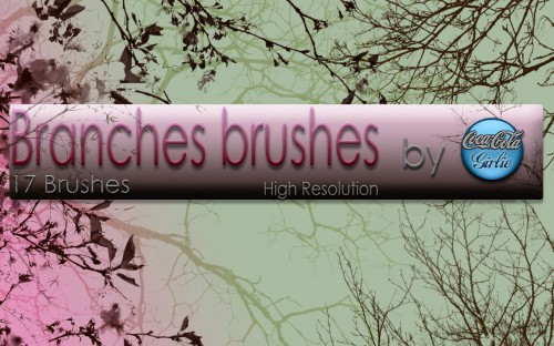 17 Branches Brushes