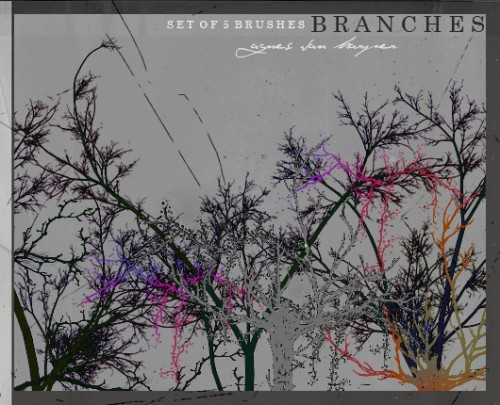 5 Free Branches Brushes