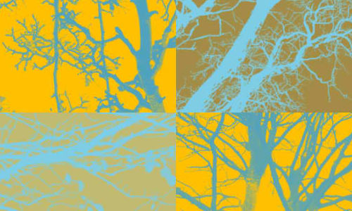 9 Photoshop Brushes of Branches