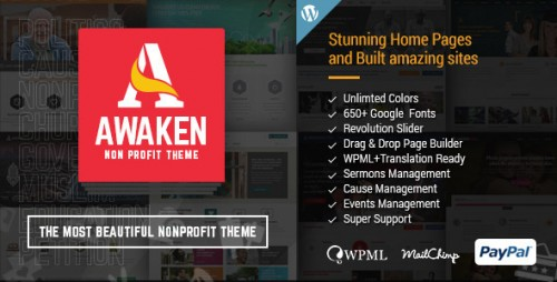 Awaken - Charity, Nonprofit, Fundraising Theme